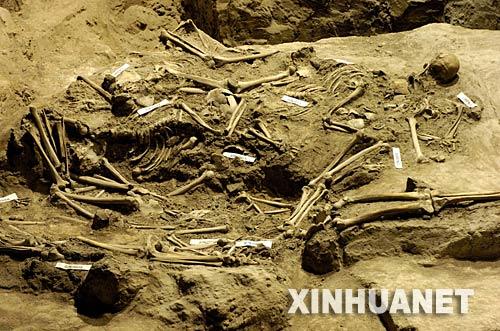 新館で展示されている被害者の遺骨