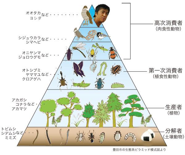 カルビーがブラックマヨネーズのCMをサイトから削除 吉田の「食物連鎖の一番下の人♪」不謹慎ツイートが原因?