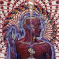Toll - Lateralus2