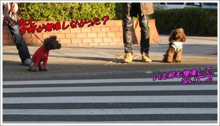 001_20120102234744.jpg
