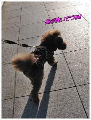 001_20120110084238.jpg