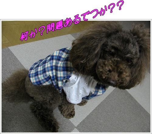 01_20120504012057.jpg
