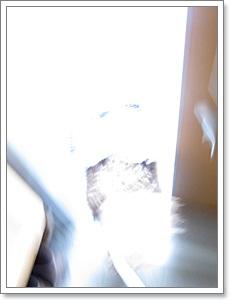 1_20120420202338.jpg