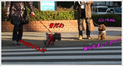 2_20120102173740.jpg