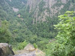Thale景色