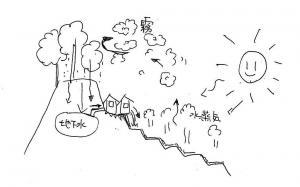 自然の循環システム