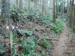 松井田城門跡2