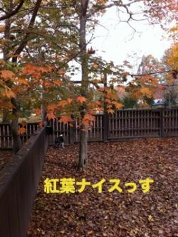 軽井沢sg1_convert_20111027015104