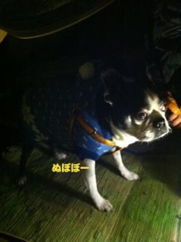 軽井沢sg9_convert_20111027015707