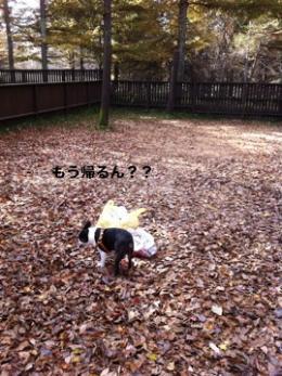軽井沢sg18_convert_20111027015951