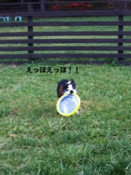 軽井沢sg14_convert_20111027015839