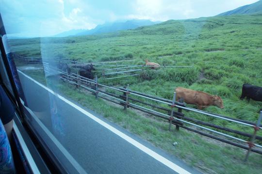 20110813_sanko_bus-09.jpg