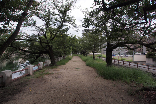 20110814_oita_castle-43.jpg