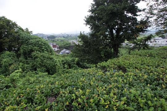 20110815_miyakono_castle-19.jpg