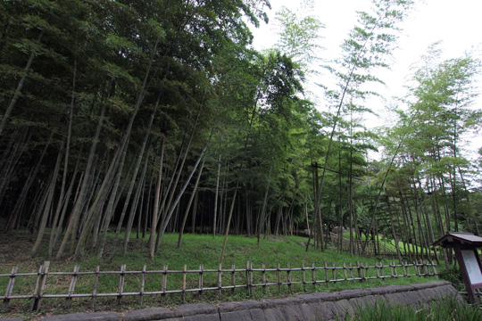 20110816_senganen-32.jpg