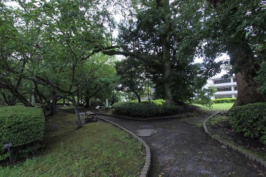 20110816_turumaru_castle-23.jpg