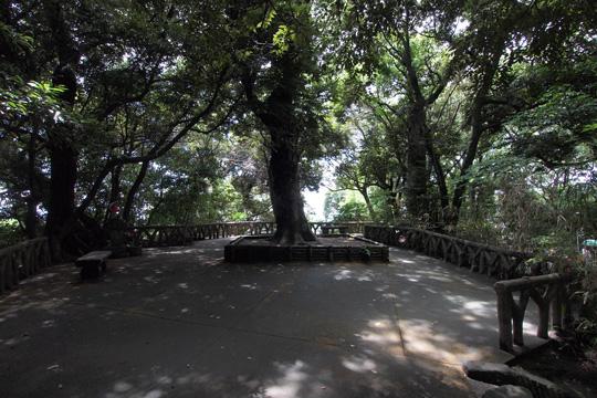 20110816_turumaru_castle-45.jpg