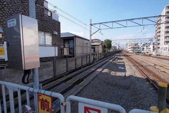 20110828_kikuna-03.jpg