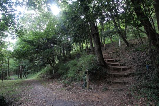 20110917_kanayama_castle-12.jpg