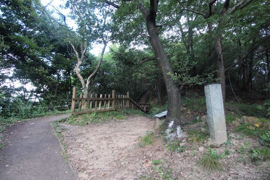 20110917_kanayama_castle-32.jpg