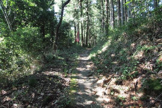 20110918_minowa_castle-63.jpg