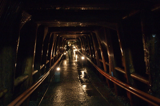 20110924_ashio_copper_mine-36.jpg