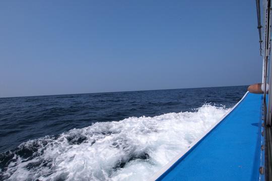 20111010_tojimbo-06.jpg