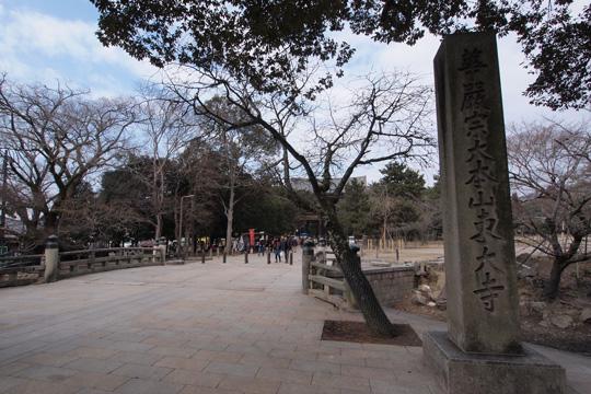 20120205_todaiji-01.jpg