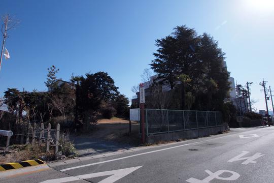 20120211_ushikubo_castle-02.jpg