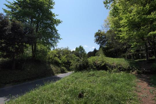 20120505_hachigata_castle-18.jpg