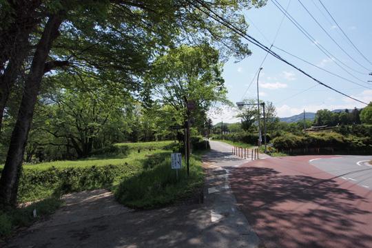 20120505_hachigata_castle-26.jpg