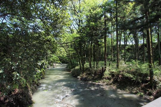20120505_hachigata_castle-31.jpg
