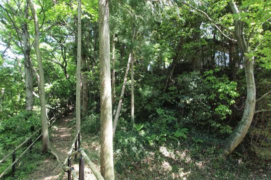20120505_hachigata_castle-49.jpg