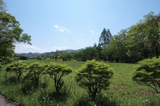 20120505_hachigata_castle-66.jpg