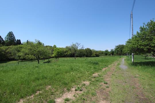20120505_hachigata_castle-70.jpg