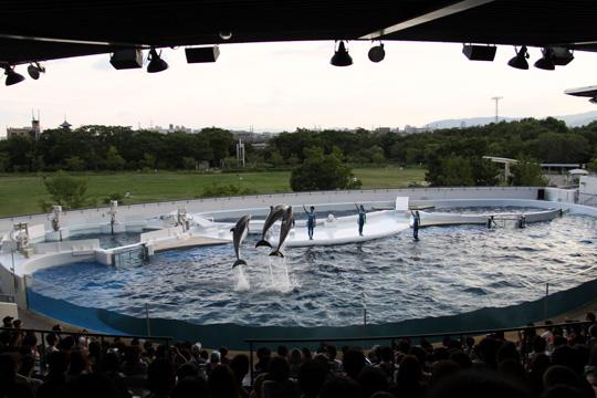 20120902_kyoto_aquarium-08.jpg