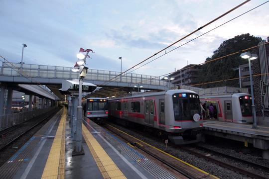 20121123_kikuna-02.jpg