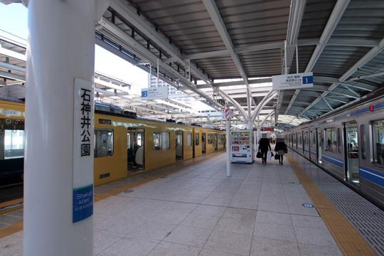 20121125_shakujiikoen-01.jpg