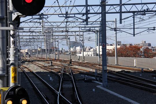 20121125_shakujiikoen-03.jpg