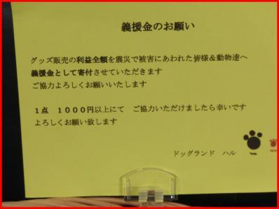CIMG7645鄒ゥ謠エ驥狙convert_20121010103534