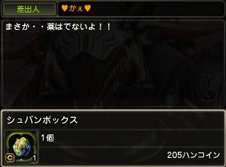1107かえさん3