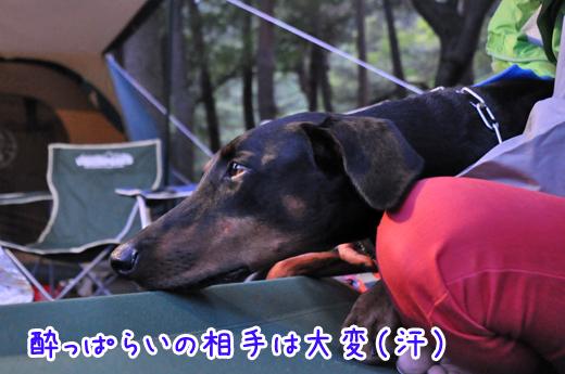 06aug12motosuko17