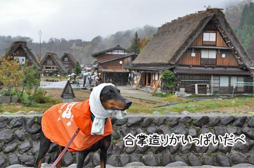6nov11shirakawago04