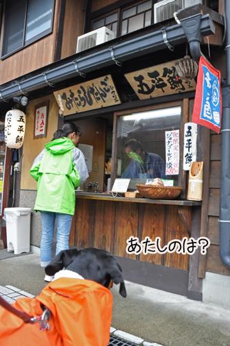 6nov11shirakawago10