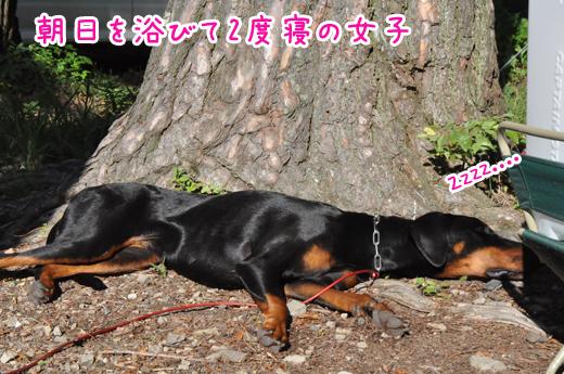 07aug12motosuko02
