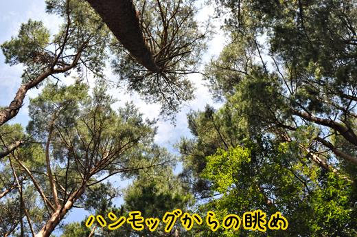 07aug12motosuko05