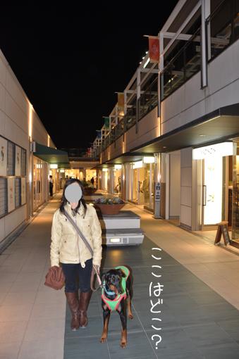 03mar12hoshigaoka01