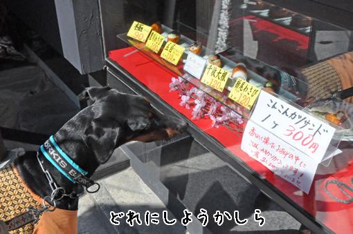 27mar12toyokawainari02