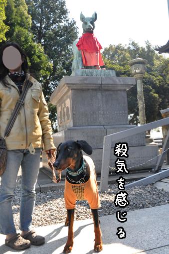 27mar12toyokawainari09