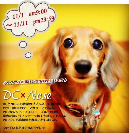 v873_20121031233746.jpg
